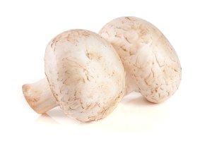 two fresh champignon mushroom isolated on white background