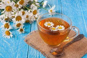 Herbal tea with fresh chamomile flowers on blue wooden background