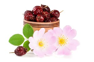 Rosehip flowers with leaf and rosehip berries in a wooden bowl isolated on white background