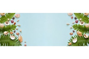 Banner Flat lay. Top view. Frame of shells of various kinds on a blue background. Seashells on a pastel background.