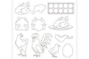 Chicken icons set