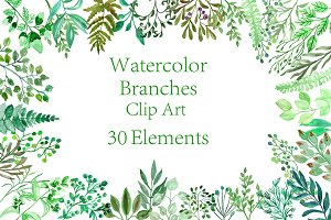 Watercolor Branches clipart