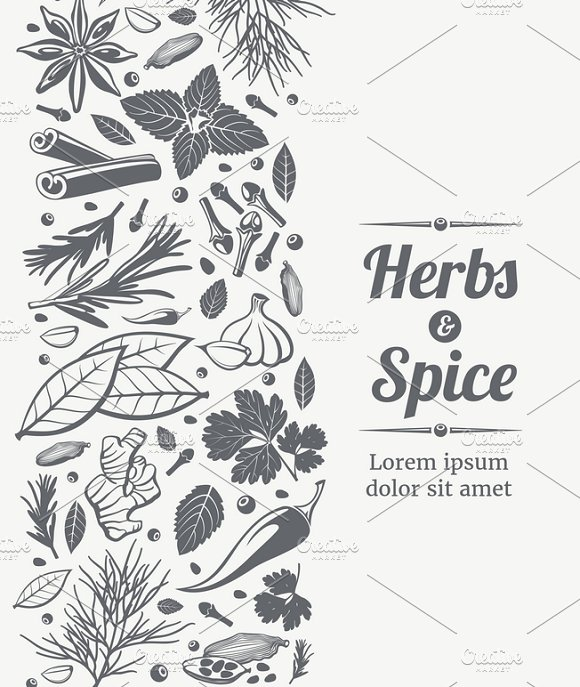 Herbs And Spices Sketch Background