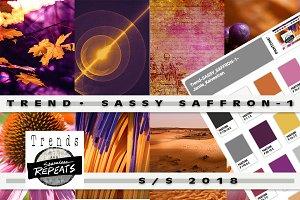 Trend Color S/S 2018 Sassy Saffron