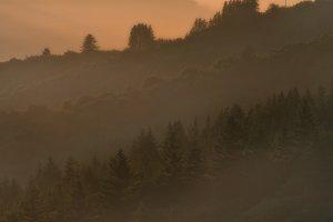 Bolinas Ridge, Calfiornia