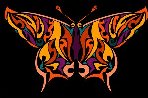 Colorful butterfly in vector