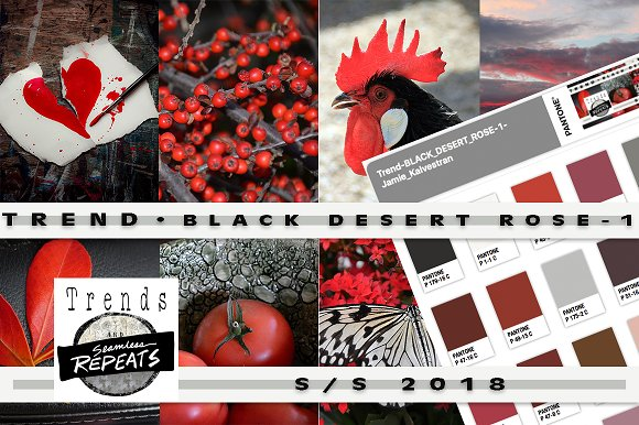 Trend Color S S'18 Black Desert Rose