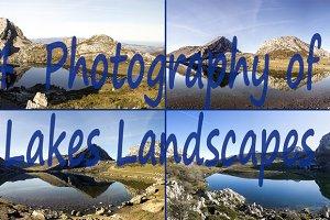 bundle pack of 4 lake landscape