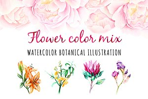 5 illustrations flower color mix