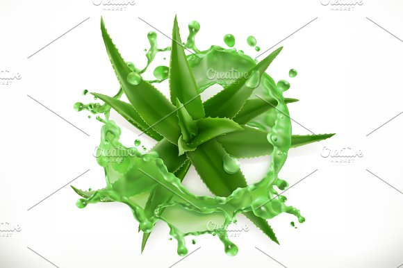 Aloe Juice 3D Vector