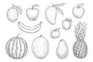 Fresh exotic fruits sketch vector isolated icons