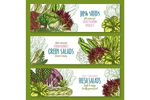 Salads leafy vegetables vector banners set