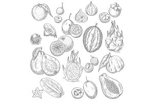 Vector exotic or tropical fruits sketch icons set