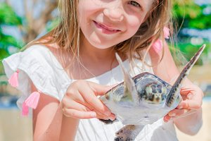 A little cute girl with a small turtle in her hands in the reserve