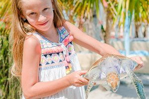 Little adorable girl with a small turtle in her hands in the reserve