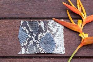 Python snakeskin leather, python skin. Small piece on a wooden background.