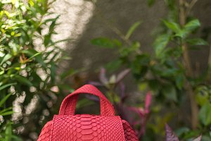 Stylish red leather snkeskin python rucksack near the swimming pool. Bali island.