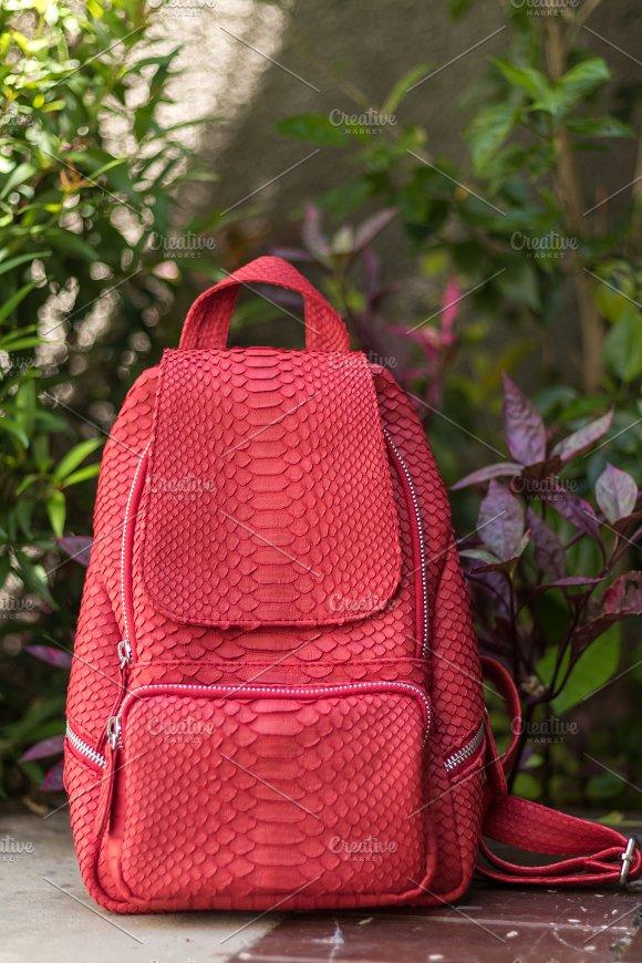 Stylish Red Leather Snkeskin Python Rucksack Near The Swimming Pool Bali Island