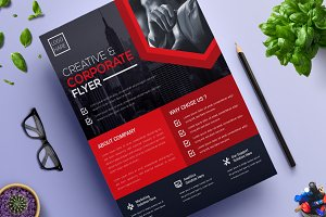 Corporate Business Flyer | Vol. 13