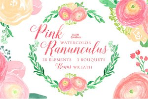 Pink Ranunculus Watercolor Florals