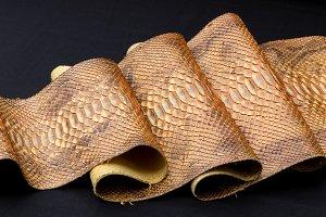 Genuine Python snakeskin leather, snake skin, texture, animal, reptile on a black background.