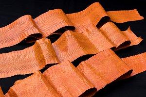 Genuine cobra snakeskin leather, snake skin, texture, animal, reptile on a black background.