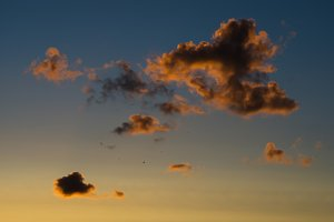 Horizontal vivid sunset cloudscape with flying birds background