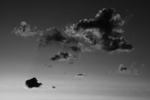 Horizontal black and white sunset cloudscape with flying birds b
