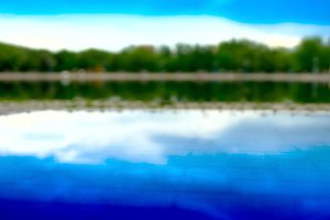 Horizontal forest reflection on street pool bokeh background