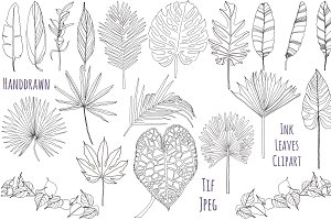 Palm leaves clipart, Foliage clipart
