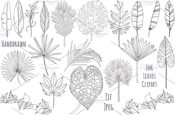 Palm Leaves Clipart Foliage Clipart