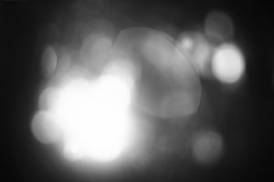 Horizontal black and white forest bokeh background