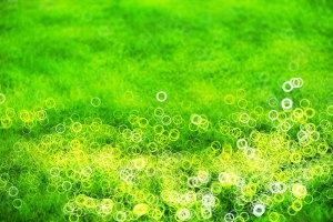 Green lawn with light leak bokeh background