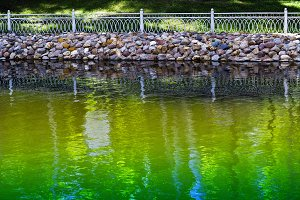 Horizontal vivid park fence near green pond background
