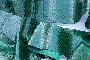 Genuine snakeskin leather, snake skin, texture background.