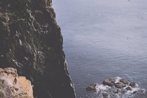 Cliff and Sea Landscape (Vintage)