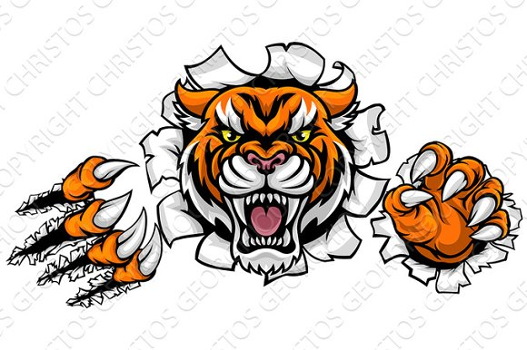 Tiger Background Claws Breakthrough
