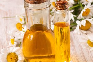 bottle with essential oil and fresh chamomile flowers on a light wooden background