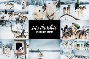 Husky Sleigh Ride - 16 Image Bundle