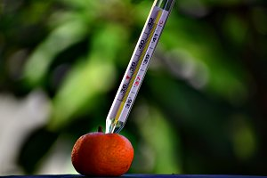 Thermometer and Healthy Food