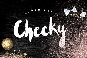 Cheeky--handwritten brush font+BONUS