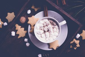 cup of hot cocoa with marshmallow and gingerbread cookies. Christmas food background. Selective focus