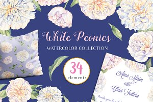 White Peonies-Watercolor Set