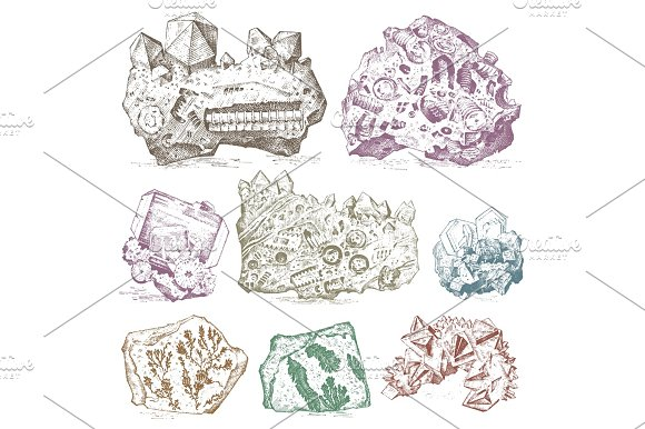 Fossilized Plants Stones And Minerals Crystals Prehistoric Animals Archeology Or Paleontology Fragment Fossils Engraved Hand Drawn In Old Sketch And Vintage Style