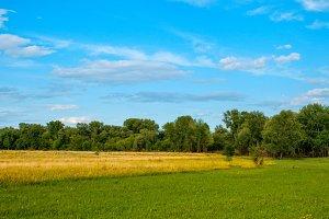 Green meadow and beautiful sky