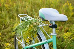 Bicycle with flowers in meadow