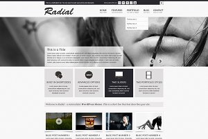 Radial - A business Template (PSD)