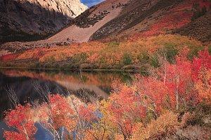 North Lake by Bishop Atumn Colors