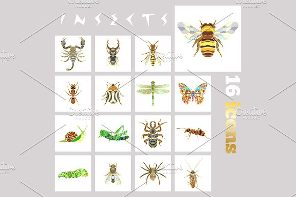 16 Insects Icons