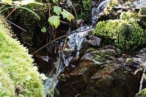 Stream Waterfall